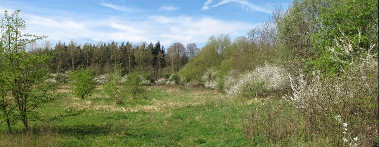 2011-04-02 G12 036~038 pano wastine Warandeputten 1